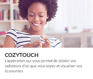 Cozytouch 306